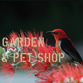 Censimenti-MMAS-Garden PetShop